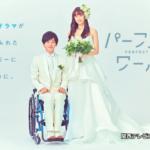 松坂桃李と山本美月のドラマ「パーフェクトワールド」は映画を超えるか?
